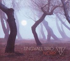 Bild på Tingvall Trio nya album