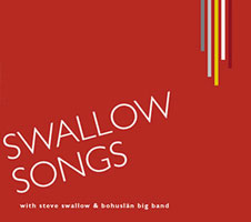 bohuslan-swallow.jpg