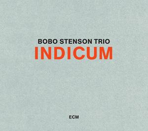 Indicum cover