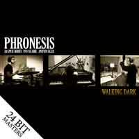 PhronesisWalkingdark