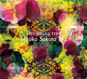 sakata dreaming tree